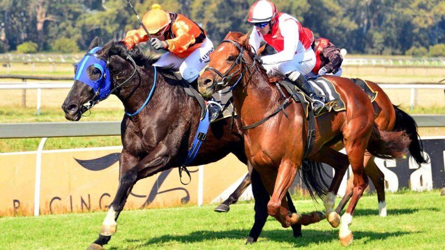 SA racing swings into action