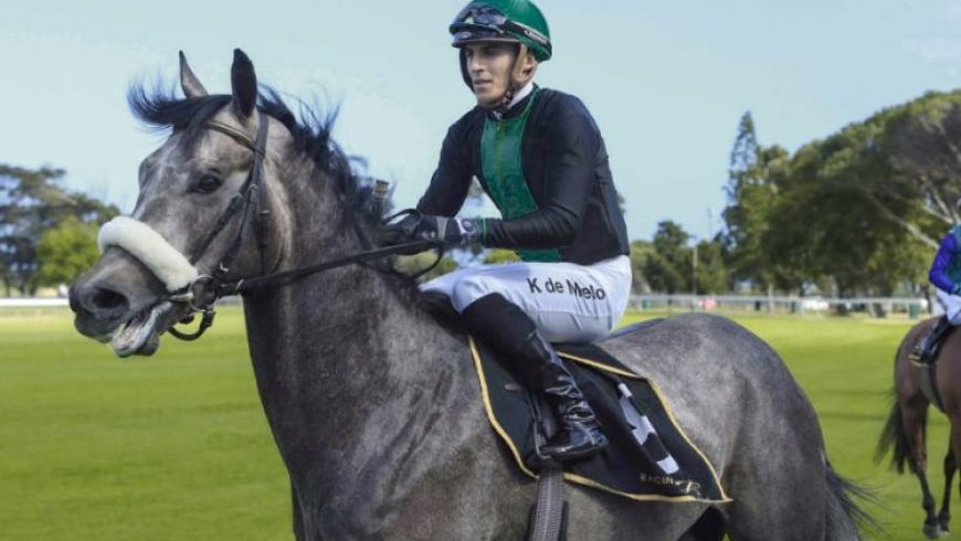 Herodotus heads for Concorde Cup