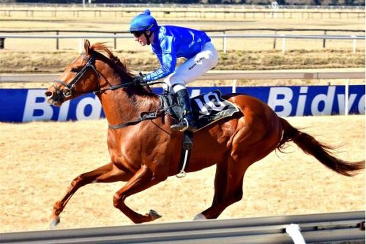 Battle Of Alesia wins for new owners